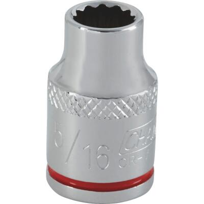 Channellock 3/8 In. Drive 5/16 In. 12-Point Shallow Standard Socket