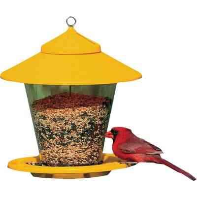 Cherry Valley Plastic Hopper Bird Feeder, 4 Lb.